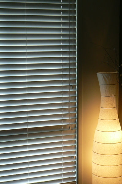 Venetian Blinds View From Inside