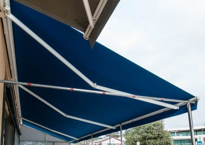folding-arm-awning-with-storm-poles-1